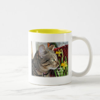 Stop and Smell the Flowers Coffee Mugs