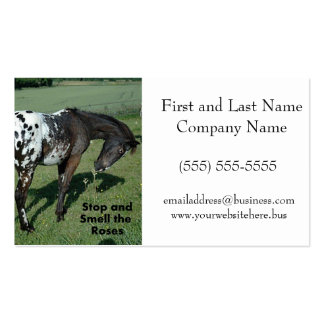 Stop and Smell the Roses Appaloosa Horse Photo Double-Sided Standard Business Cards (Pack Of 100)