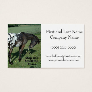 Stop and Smell the Roses Appaloosa Horse Photo Business Card