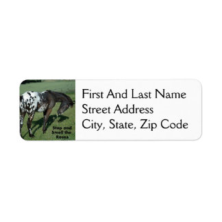 Stop and Smell the Roses Appaloosa Horse Photo Label