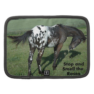 Stop and Smell the Roses Appaloosa Horse Photo Folio Planners