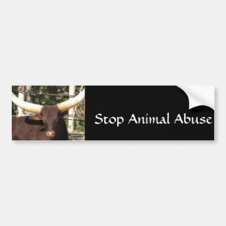 Stop Animal Abuse Car Bumper Sticker