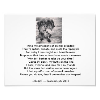 Stop Animal Breeders Photo Print