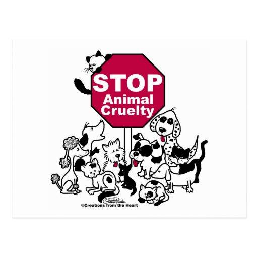 Stop Animal Cruelty Postcard