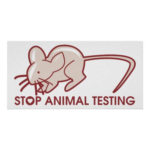 animal testing paper 8 This article presents several ideas for consideration in argumentative essays on animal testing.