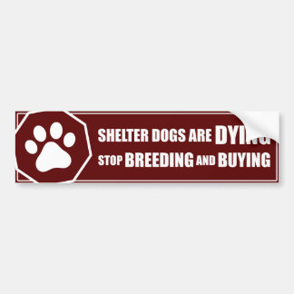 """Stop Breeding and Buying"" Car Bumper Sticker"