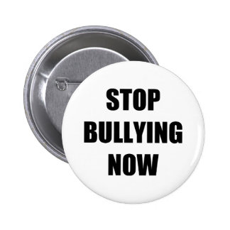 Stop bullying now pins