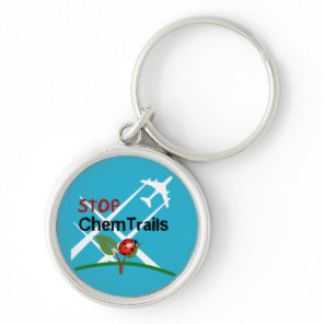 Stop Chemtrails Lady Bug Ecocide Keychain
