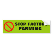 STOP FACTORY FARMING BUMPER STICKER