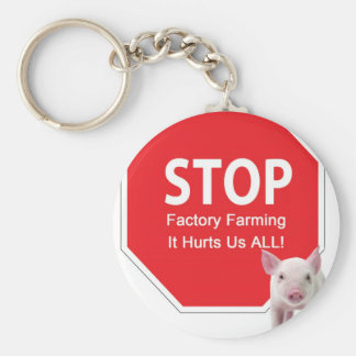 Stop Factory Farms Series 1 Basic Round Button Keychain