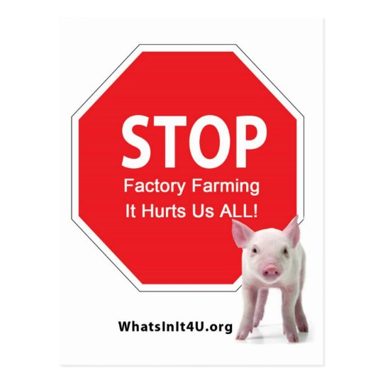 Stop Factory Farms Series 1 Postcard