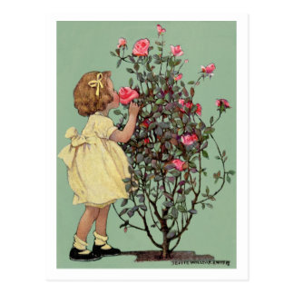 """""""STOP 'N SMELL THE ROSES"""" VINTAGE JESSIE WILLCOX POSTCARD"""