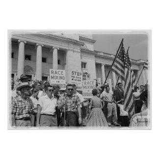 Stop Race Mixing Civil Rights Movement Protest Poster