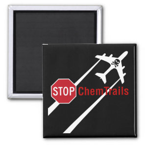 Stop Sign Plane Aerosol Trails LadyBug Magnet