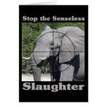 Stop Slaughter-Elephant Cards