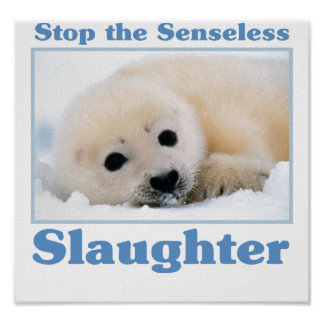 Stop slaughter-seals posters