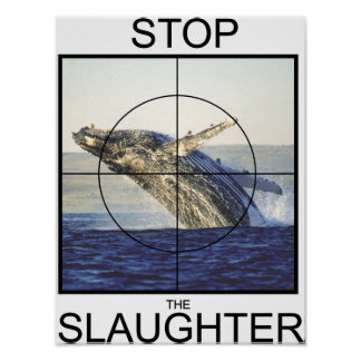 Stop Slaughter-whales Poster