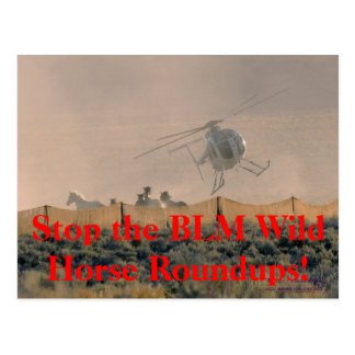 STOP THE ROUNDUPS President Obama! Post Cards