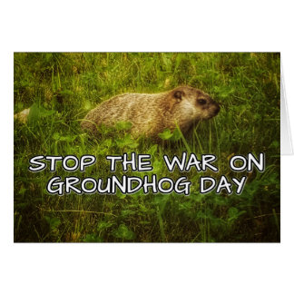 Stop the war on groundhog day greeting card