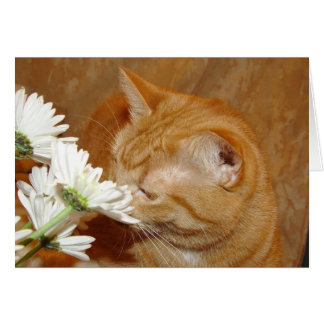 Stop to smell the flowers card