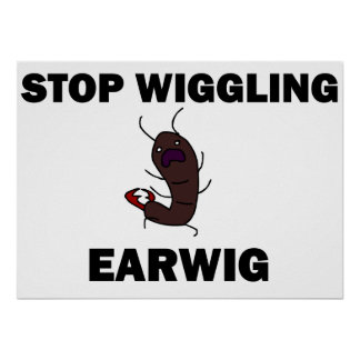 Stop Wiggling Earwig poster
