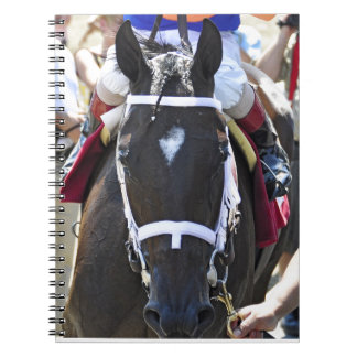 Stopchargingmaria victorious in her first race. notebook