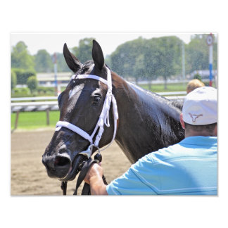 Stopchargingmaria victorious in her first race. photo print