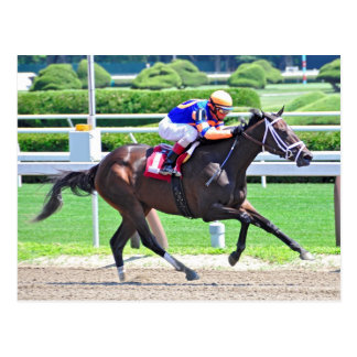 Stopchargingmaria victorious in her first race. postcard