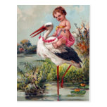 Stork and Baby Post Cards