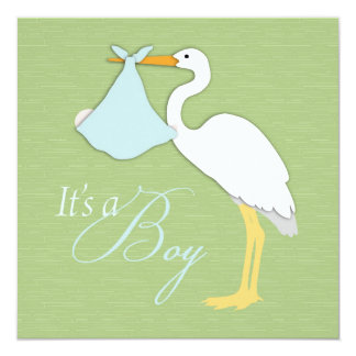 Stork Boy Baby Shower Invitation Square