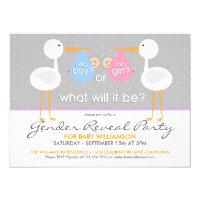 Stork Bundle Gender Reveal Party Invitation