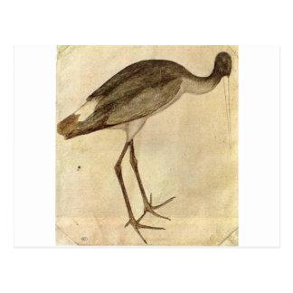 Stork by Pisanello Postcard