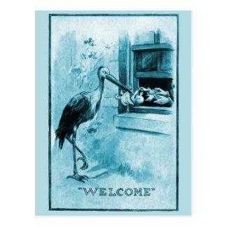 Stork Delivering Baby Boy Postcard