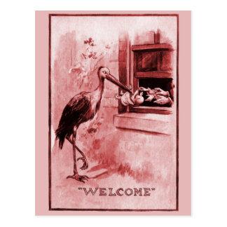 Stork Delivering Baby Girl Postcard