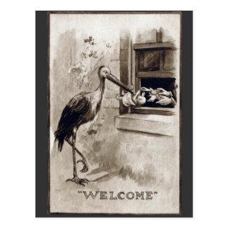 Stork Delivering Baby Vintage Postcard