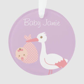 Stork Delivers cute Baby Girl Nursery Room Decor