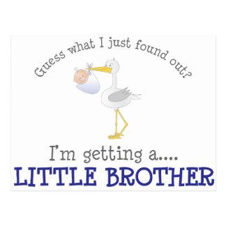 Stork Little Brother T-shirt Postcard