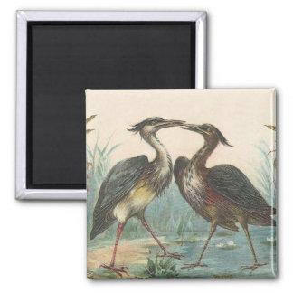 Stork Magnet