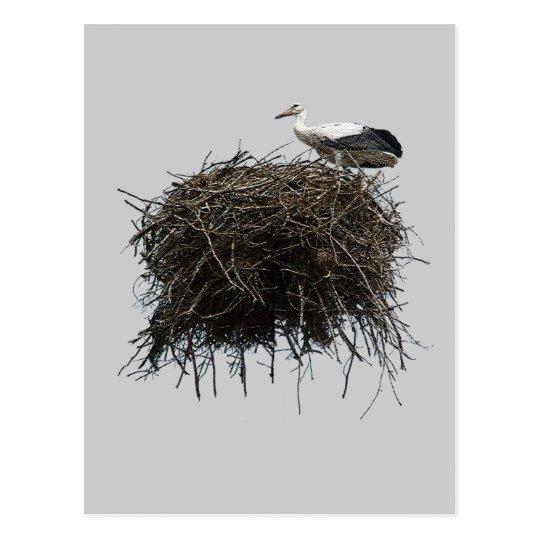 stork nest postcard