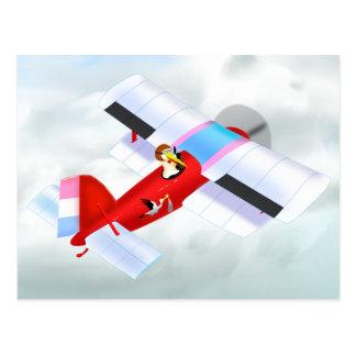 Stork Plane Postcard