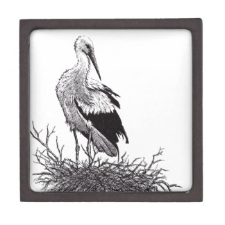 stork standing in nest pen & ink bird drawing jewelry box