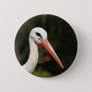 Stork - symbol of Strasbourg and Alsace, France Button