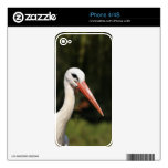 Stork - symbol of Strasbourg and Alsace, France Decals For iPhone 4