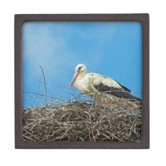 Stork's Nest Premium Gift Box