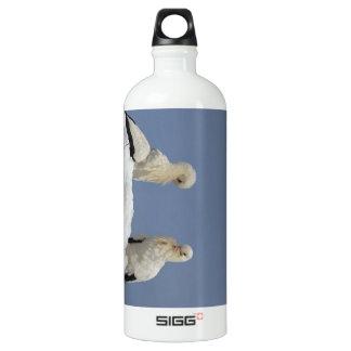 Storks Water Bottle