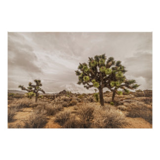 Storm Approaching at Joshua Tree Poster