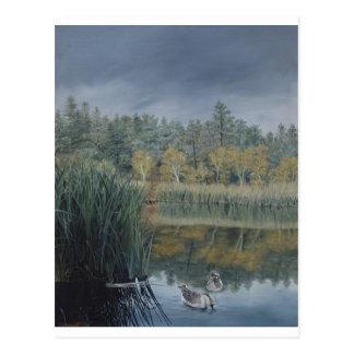 Storm approaching Lynx Lake Postcard