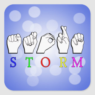 STORM ASL SIGN LANGUAGE STICKER