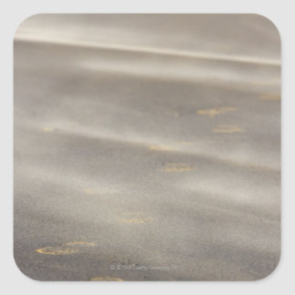 storm blowing shifting sand over boot prints 2 square sticker