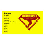 STORM CHASER EYES ON THE SKY BUSINESS CARDS